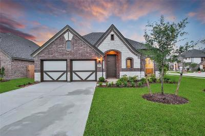 Pearland Single Family Home For Sale: 3228 Parker Drive