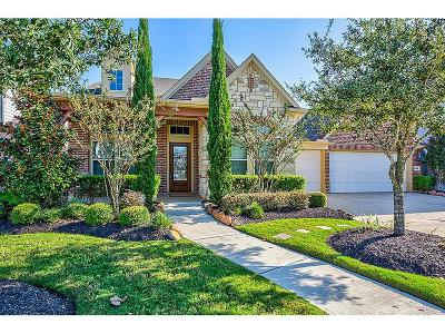 Katy Single Family Home For Sale: 28618 Rolling Ridge Drive