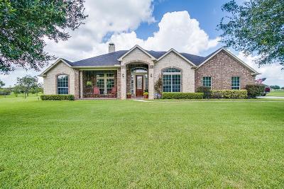 Rosenberg Single Family Home For Sale: 3411 River Bend Drive