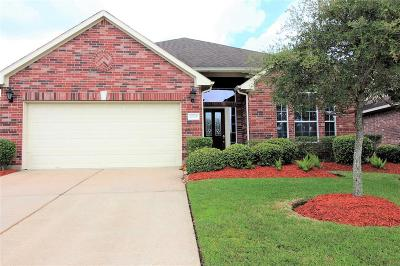 Houston Single Family Home For Sale: 12315 High Tree Trail