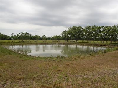 Fort Bend County Farm & Ranch For Sale: Pleak Road