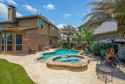 Sugar Land Single Family Home For Sale: 4407 Parkwater Cove Court