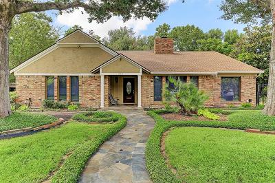 Houston Single Family Home For Sale: 10615 Olympia Drive