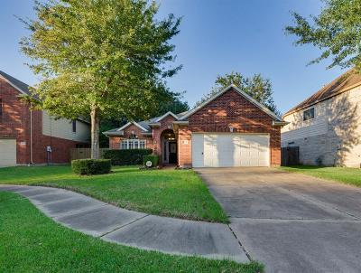 Sugar Land Single Family Home For Sale: 3618 Stratford Arms Lane