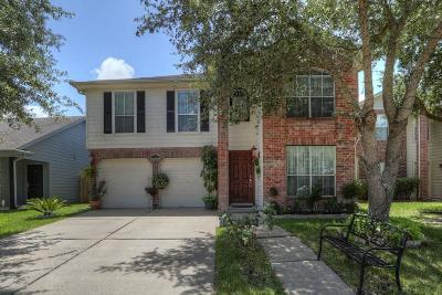 Houston Single Family Home For Sale: 8743 Westbrae Park Lane