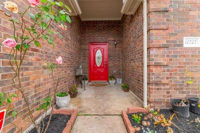 Houston Single Family Home For Sale: 10707 Katya Gillian Drive