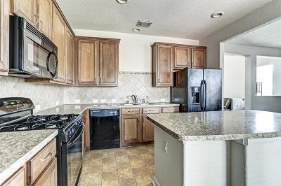 Missouri City Condo/Townhouse For Sale: 1150 Lexington Grove Drive