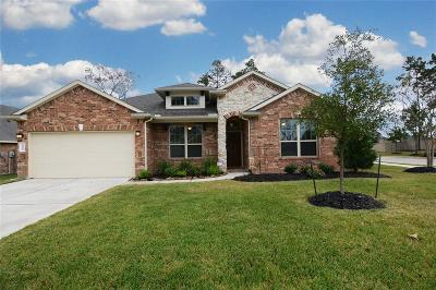 Conroe Single Family Home For Sale: 14002 Beaverhead Range Court