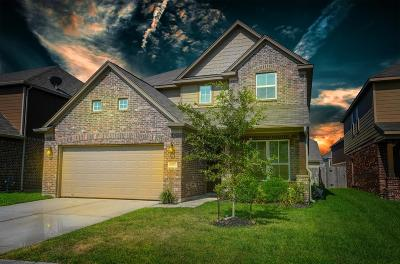 Single Family Home For Sale: 8211 Oat Meadow Trail