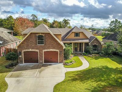 Porter Single Family Home For Sale: 25261 Ramrock Drive