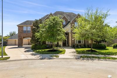 Katy Single Family Home For Sale: 3907 Meagan Hills Court
