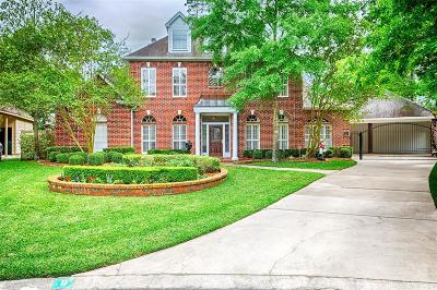 The Woodlands Single Family Home For Sale: 6 Shadow Stone Street