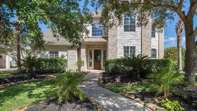 Pearland Single Family Home For Sale: 3110 Orchard Briar Lane