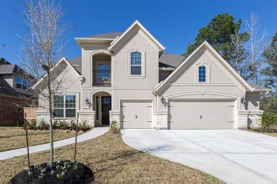 Porter Single Family Home For Sale: 6007 Vineyard Creek Lane