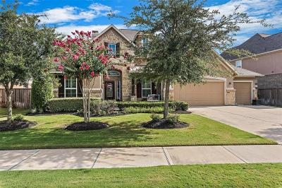 Katy Single Family Home For Sale: 28006 Nobbe Hollow Drive