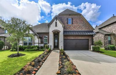 Missouri City Single Family Home For Sale: 2622 Parish Park
