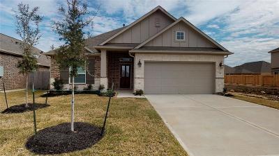 Dickinson Single Family Home For Sale: 241 Dale Ridge Lane