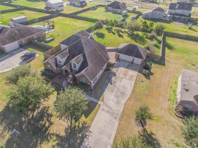 Baytown Single Family Home For Sale: 8726 Black Horse Road