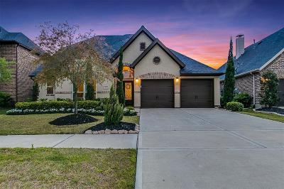 Fulshear Single Family Home For Sale: 5126 Bartlett Vista Court
