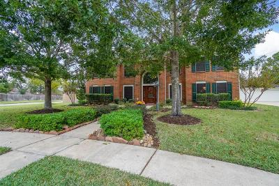 Sugar Land Single Family Home For Sale: 16 Hollinfare Court