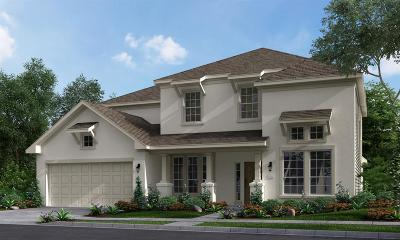 Sugar Land Single Family Home For Sale: 5410 Clouds Creek Lane