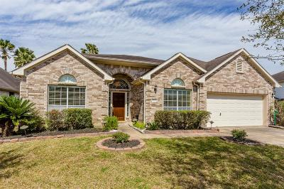 Pearland Single Family Home For Sale: 3027 River Birch Drive