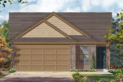 Katy Single Family Home For Sale: 25331 Cheshire Knoll Street