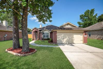 Single Family Home For Sale: 216 Adobe Terrace N