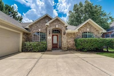 The Woodlands Single Family Home For Sale: 30 Emery Mill Place