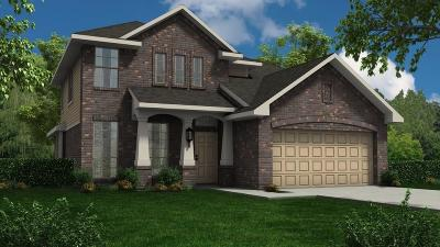 Alvin Single Family Home For Sale: 5200 Dry Hollow Lane
