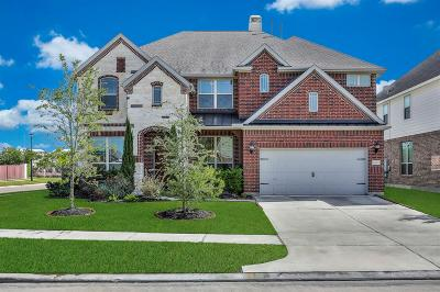 Katy Single Family Home For Sale: 26803 Grey Peregrine Drive