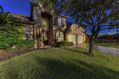 Pearland Single Family Home For Sale: 2813 Rocky Springs Drive