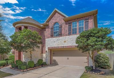 Katy Single Family Home For Sale: 6430 Pepper Hollow Lane