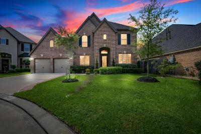 Harris County Single Family Home For Sale: 3711 Cedar Square Lane