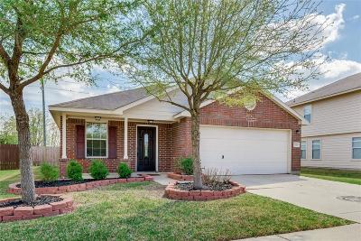 Katy Single Family Home For Sale: 22019 Silverfield Park Lane