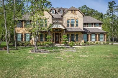 Houston Single Family Home For Sale: 14711 Brindle Trail