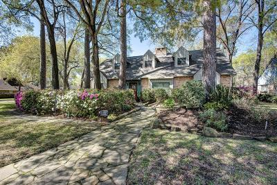 Houston Single Family Home For Sale: 619 Electra Drive