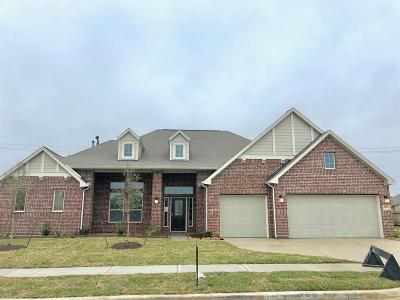 Baytown Single Family Home For Sale: 6823 Vista Ledge Drive