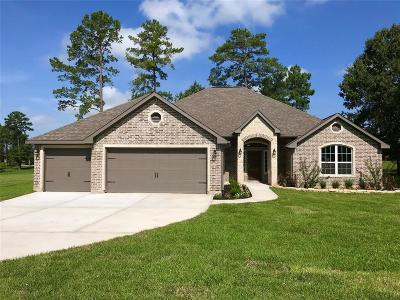 Montgomery Single Family Home For Sale: 11747 Parkside Boulevard