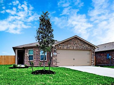 Galveston County Rental For Rent: 333 Summer Horse Drive
