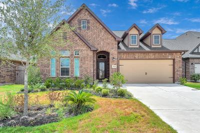Fulshear Single Family Home For Sale: 3514 Shadow Bay Court