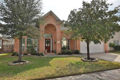 Tomball Single Family Home For Sale: 18206 Rustic Springs Drive