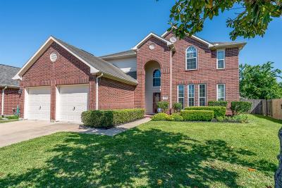 Houston Single Family Home For Sale: 16418 Sunlamp Court