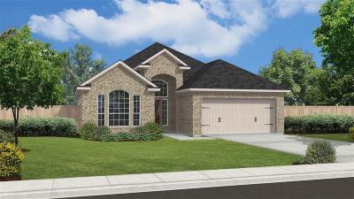 Missouri City Single Family Home For Sale: 3723 Altino Court