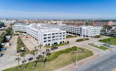 Galveston Condo/Townhouse For Sale: 6102 Seawall Boulevard #257