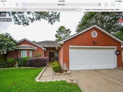 Houston Single Family Home For Sale: 16331 Salinas Ln