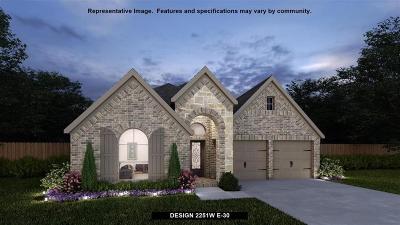Montgomery Single Family Home For Sale: 115 Del Carmen Drive