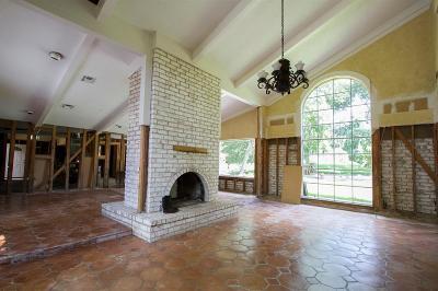 Houston Single Family Home For Sale: 12318 Lanny Lane