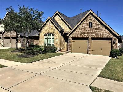 Sugar land Single Family Home For Sale: 6711 Miller Shadow Lane