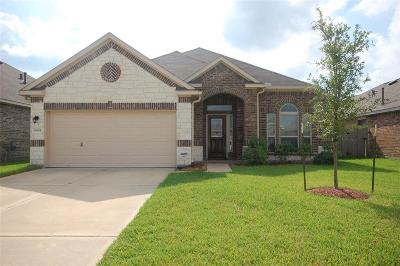 Tomball Single Family Home For Sale: 10011 Red Tamarack Ln Lane